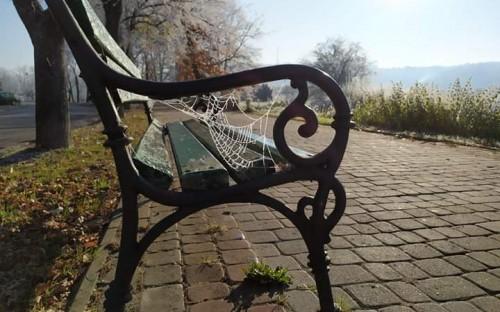 ALEKSANDRA DUDEK- Jesienno-zimowe przebudzenie image