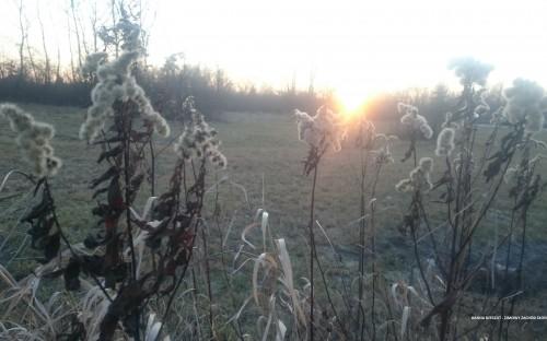 HANNA RZESZUT - Zimowy zachód słońca image
