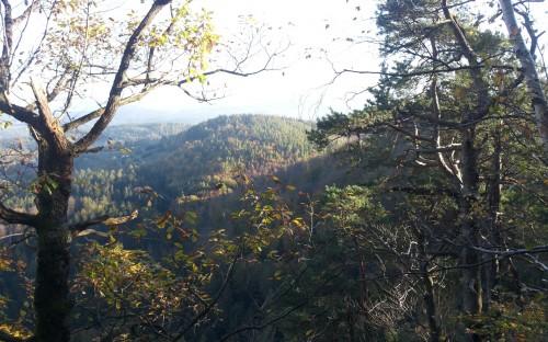 MAJA ZĄBEK - Kolory jesieni w górach image