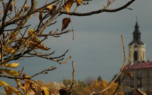 WIKTORIA CICHOCKA - Przemyskie barwy jesieni image