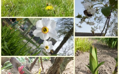 """""""Wiosenne przebudzenie"""" - Natalia Kasprzyk  image"""